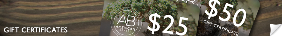 American Bonsai Gift Certificates